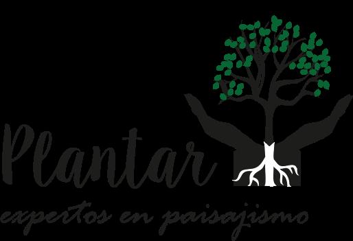 Plantar Madrid