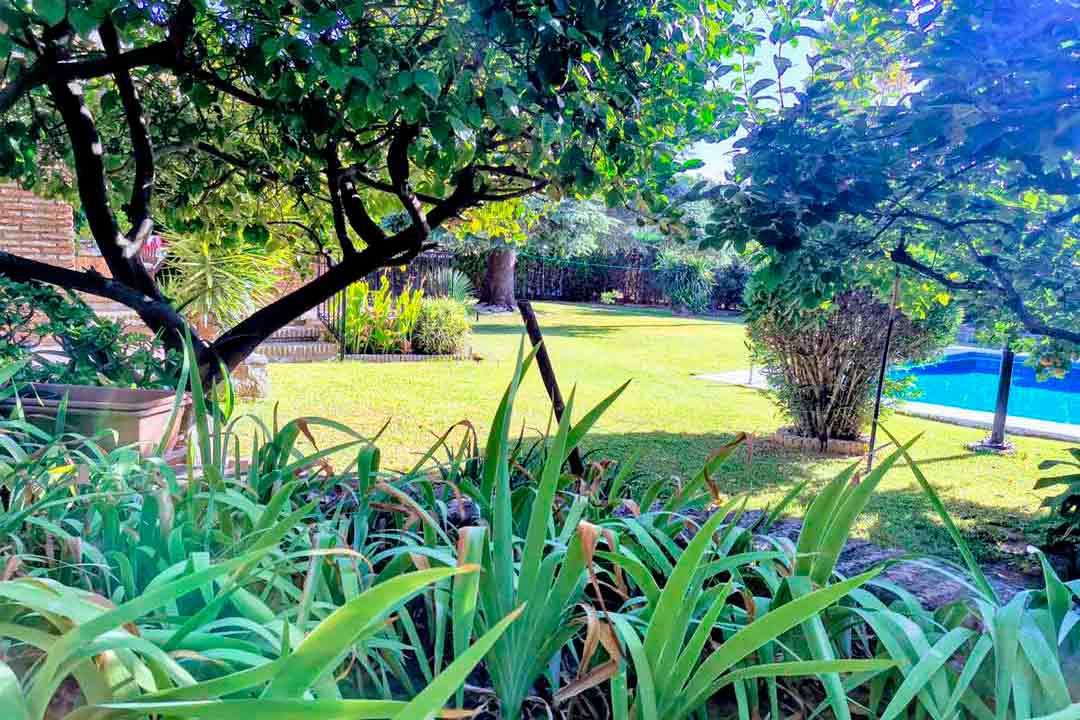 diseño jardines exteriores plantarmadrid