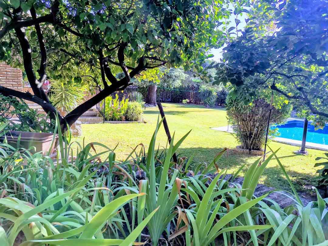 diseño jardines plantar madrid