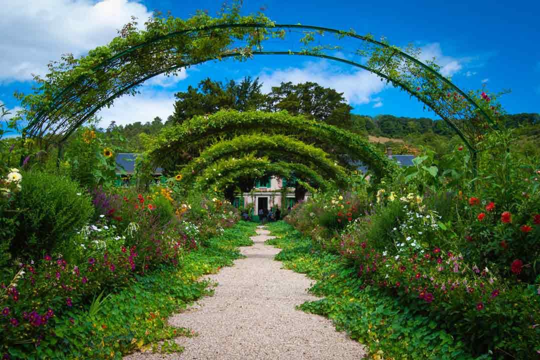 limpieza jardines y zonas verdes